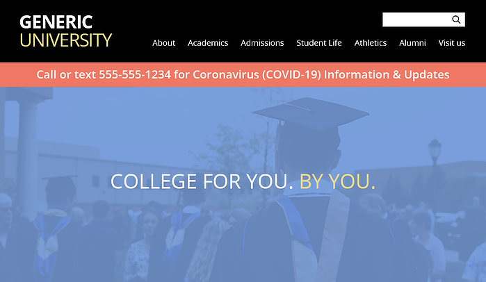 Home page sample with COVID-19 hotline number banner