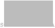 USA-logo